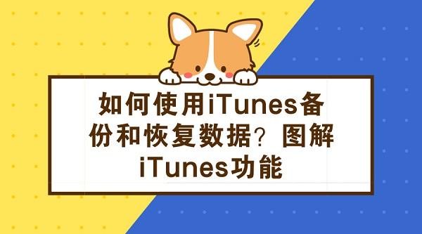 如何使用iTunes备份和恢复数据 图解iTunes功能